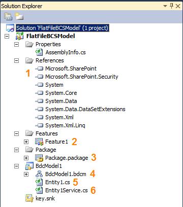 BCS Model Project Files